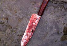 Άρτα: Άγρια δολοφονία - Τον έσφαξαν ενώ κοιμόταν και του έκοψαν τα αυτιά!