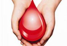 Το πρόγραμμα «4 εποχές της αιμοδοσίας»καλωσορίζει το… Φθινόπωρο!