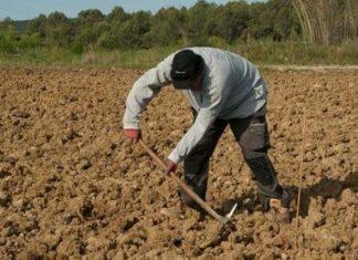 Ηράκλειο: 55χρονος βρέθηκε νεκρός στο χωράφι του