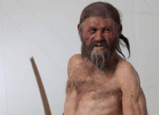 Ότζι, ο άνθρωπος των Πάγων: Τι περιείχε το τελευταίο γεύμα του