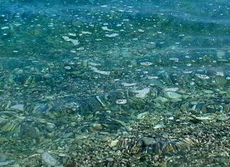 Τα πιο συνηθισμένα αντικείμενα που ανασύρονται από το βυθό της θάλασσας είναι τα πλαστικά μιας χρήσης και οι γόπες των τσιγάρων