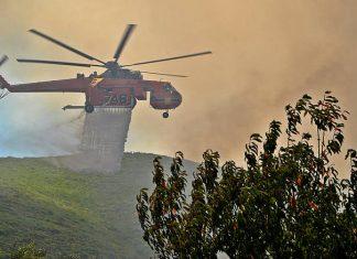 Πυρκαγιά σε δασική έκταση στην Επίδαυρο