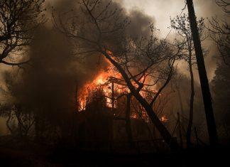 Κιθαιρώνας: Δυσκολεύει το πύρινο μέτωπο τη νύχτα – Ενισχύθηκαν οι δυνάμεις