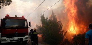 Εύβοια: Επί ποδός πολέμου ο κρατικός μηχανισμός για την πυρκαγιά – Ζητήθηκε βοήθεια από την Ε.Ε.