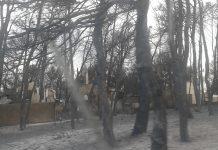Μάτι Αττικής: Στους 98 οι νεκροί από τη φωτιά - Κατέληξε εγκαυματίας στο ΚΑΤ