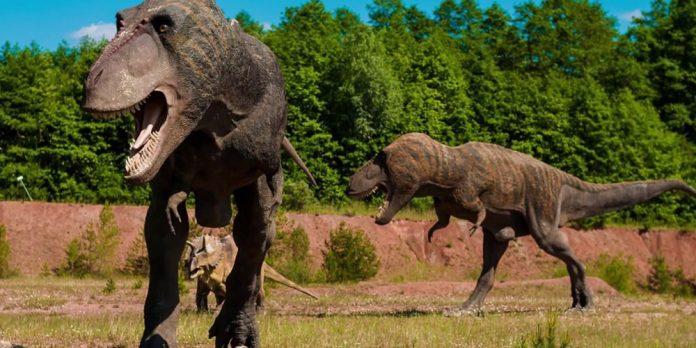 Νότια Αφρική: Ανακαλύφθηκε τεράστιος δεινόσαυρος