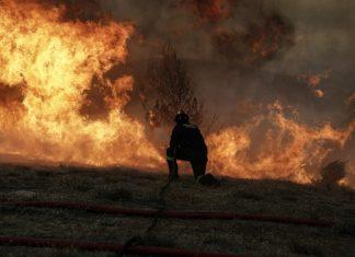 Εύβοια: Ολονύχτια μάχη με τις φλόγες δίνει η Πυροσβεστική