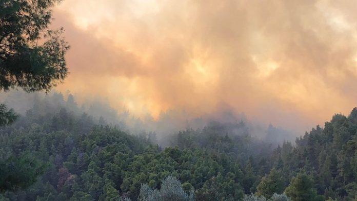 Σάμος: Μέσα σε σπίτια η φωτιά – Εκκενώνονται δύο ξενοδοχεία