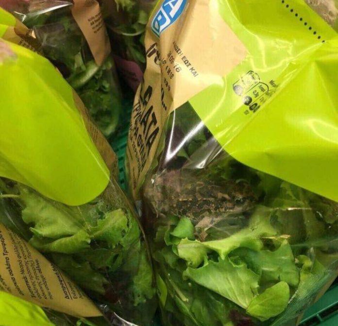 Απίστευτη καταγγελία για... βάτραχο μέσα σε συσκευασμένη σαλάτα