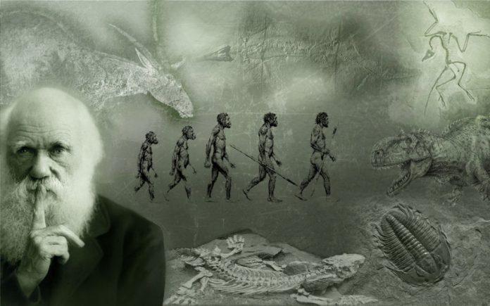 «Καταρρίπτεται» η θεωρία του Δαρβίνου: «Όλοι προερχόμαστε από δύο μόνο ανθρώπους»