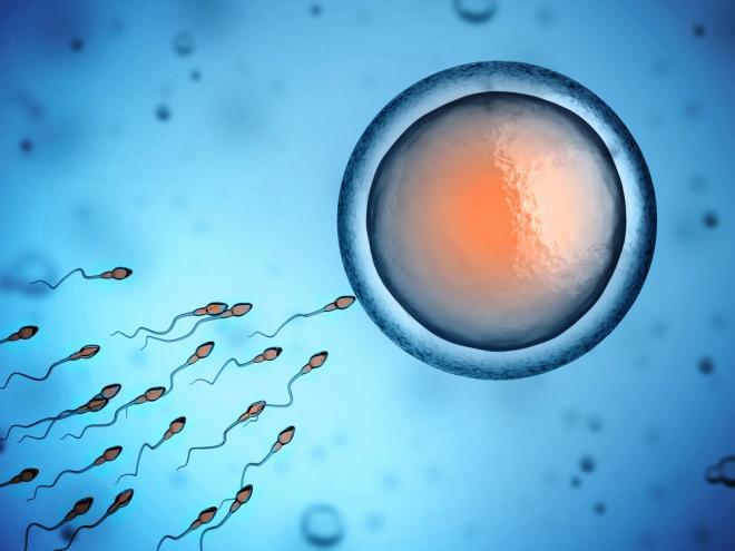 Η ποιότητα του ανδρικού σπέρματος διαρκώς επιδεινώνεται