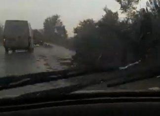 Φθιώτιδα: Διακοπές ρεύματος και πλημμυρισμένους δρόμους αφήνει στο πέρασμά του ο «Αντίνοος»