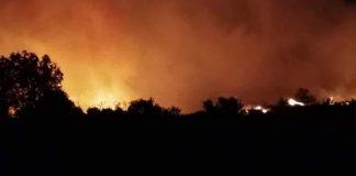 Εύβοια - Πύρινο θρίλερ! Μάχη με τις φλόγες μέσα στα χωριά δίνουν οι πυροσβέστες - Αντιπυρική ζώνη στα Ψαχνά