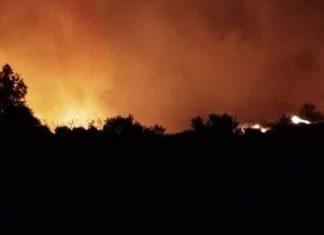 ΤΩΡΑ - Φωτιά στη Φλώρινα