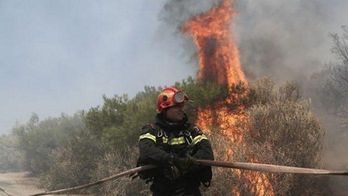 Πυρκαγιά στο δάσος Χαϊδαρίου