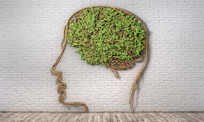 Ακολουθήστε 7 συμβουλές για «κοφτερό» μυαλό μέχρι τα γεράματα