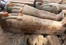 Τριάντα ξύλινες σαρκοφάγους, που βρέθηκαν όλες μαζί σε μια κρύπτη κοντά στο Λούξορ, αφού έμειναν θαμμένες στην άμμο επί 3.000 χρόνια, παρουσίασαν σήμερα οι αιγυπτιακές αρχές.