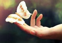 Υπαρξιακές εμβαθύνσεις με αφορμή τον Κορωνοϊό από ένα ψυχολόγο