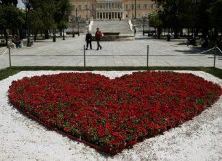 Κόκκινα λουλούδια στην πλατεία Συντάγματος
