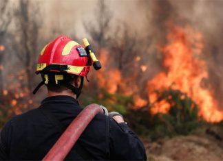 Αλεξανδρούπολη: Σε εξέλιξη η πυρκαγιά που εκδηλώθηκε χθες μεταξύ των οικισμών Μελίας και Νίψας