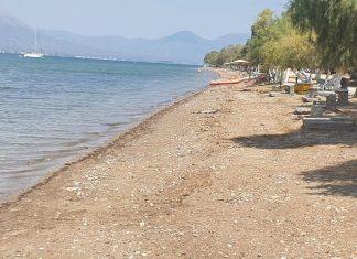 Ωρωπός: Σε μηδενικό χρόνο παραδίδονται και πάλι στους πολίτες καθαρές οι ακτές