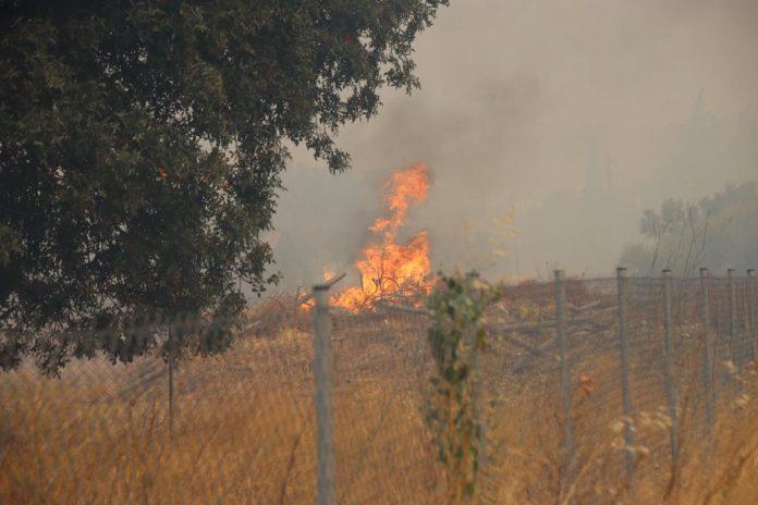 Φωτιά σε Καλύβια-Κερατέα